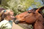 jaro u koní