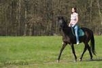 Petra na koni