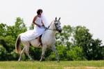 koňská svatba